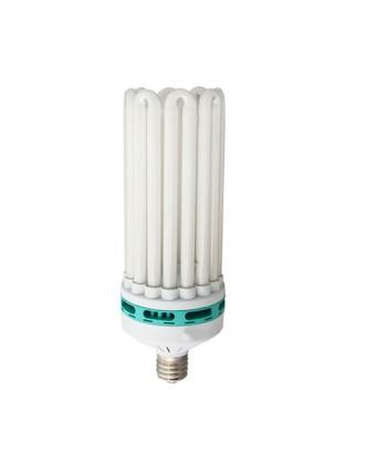 GRT 150w Grow CFL