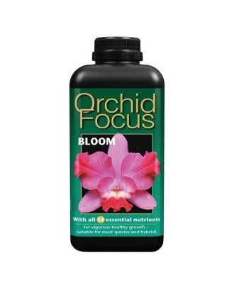 Growth Technology Orchid Focus Bloom 1 litre