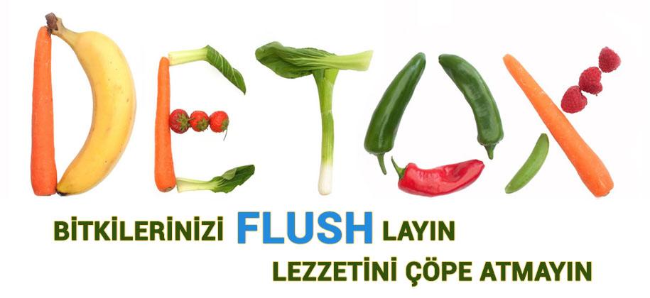 Flush Ürünleri