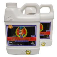Connoisseur Bloom A-B 500 ml