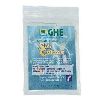 Subculture 10 gram